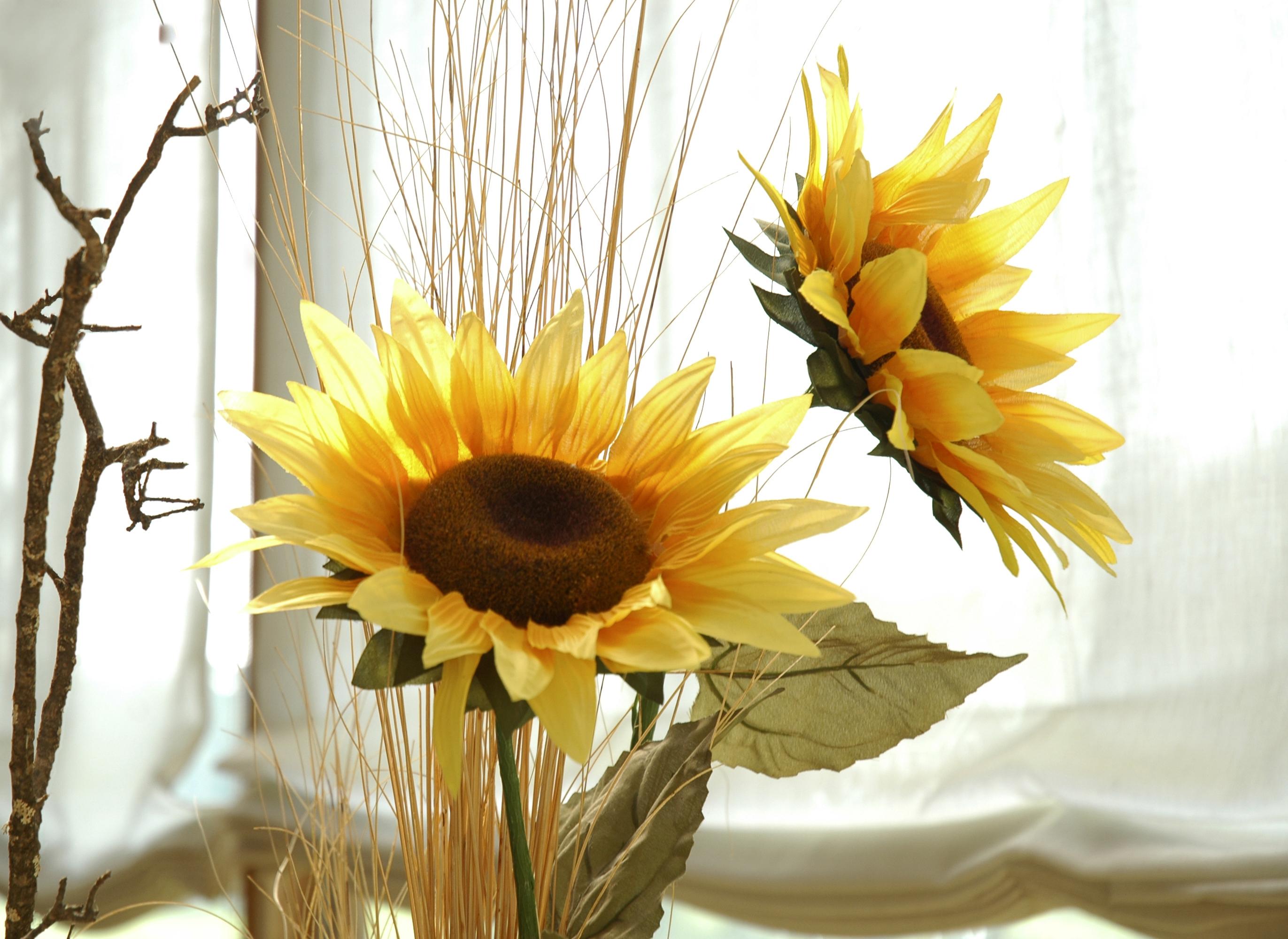 Kwiaty z papieru Image